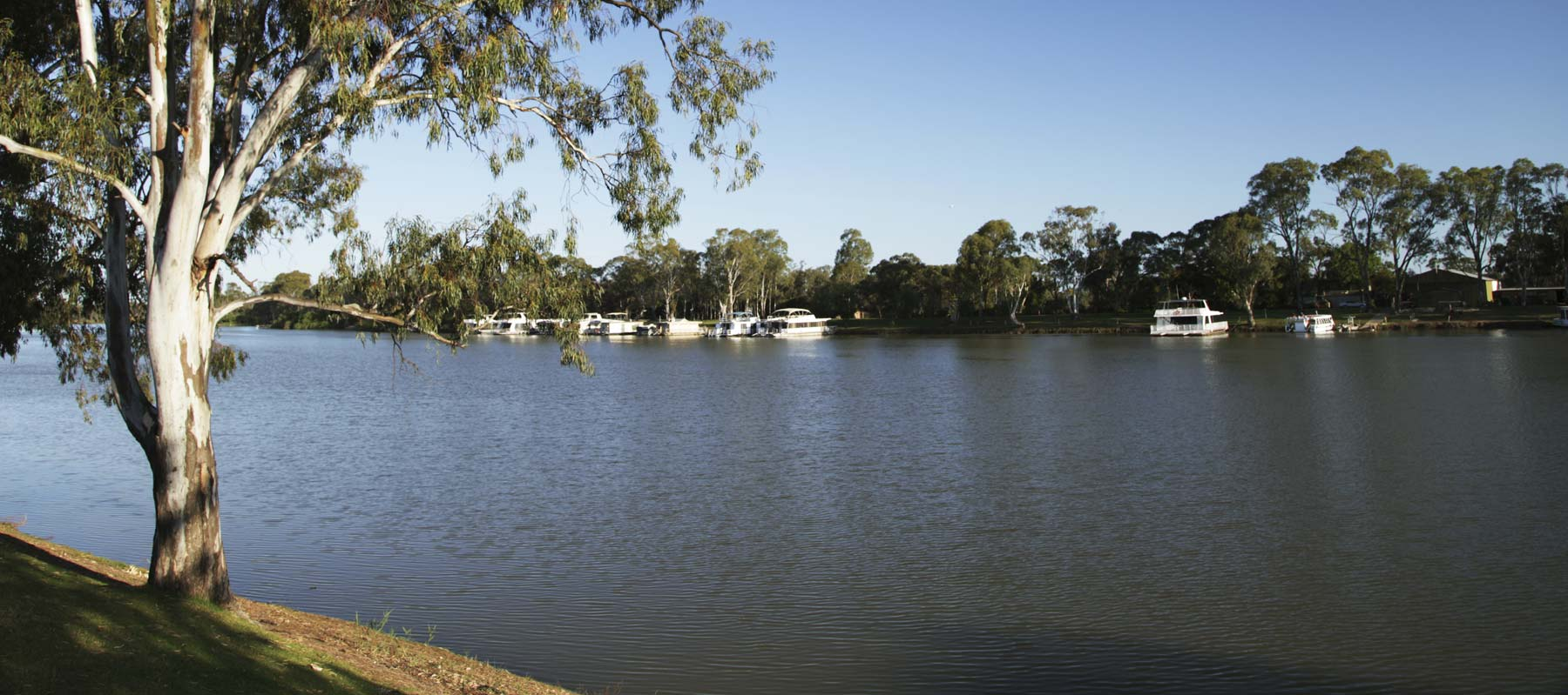 House boats on the water at Echuca Moama